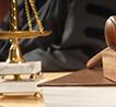 野生动物专题 养龟也有罪?大数据分析龟类野生动物犯罪量刑尺度